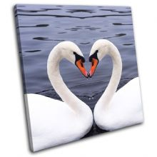 Swans Heart Love Animals - 13-1331(00B)-SG11-LO